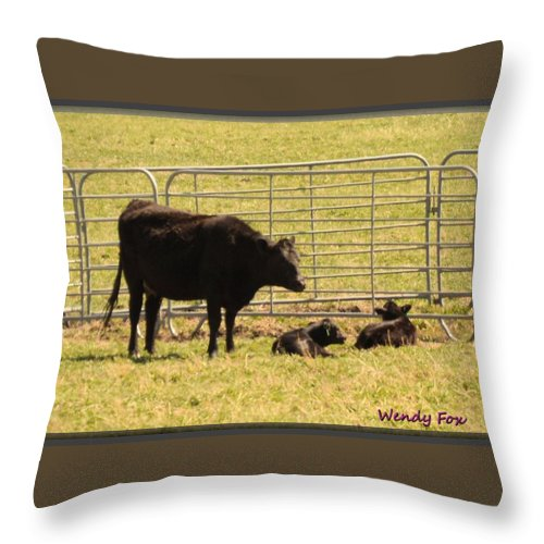 Cow Throw Pillow featuring the photograph Twin Calves by Wendy Fox