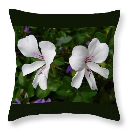 Plant Throw Pillow featuring the photograph Twin Flowers by Valerie Ornstein