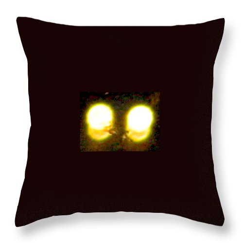 Lights Throw Pillow featuring the photograph Twin Lights by Stephen Hawks