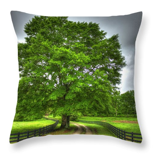 Reid Callaway Twin Oaks Drive Throw Pillow featuring the photograph Twin Oaks Drive Southern Living by Reid Callaway