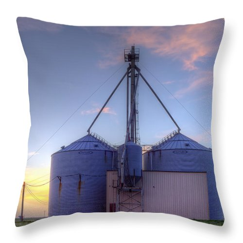 Grainery Throw Pillow featuring the photograph Twinkies by Carl Ray Evans