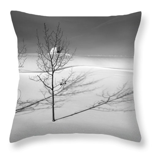 Nature Throw Pillow featuring the photograph Twins by Skip Hunt