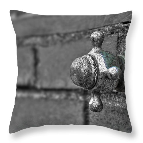 Beach Throw Pillow featuring the photograph Twist And Turn by Evelina Kremsdorf