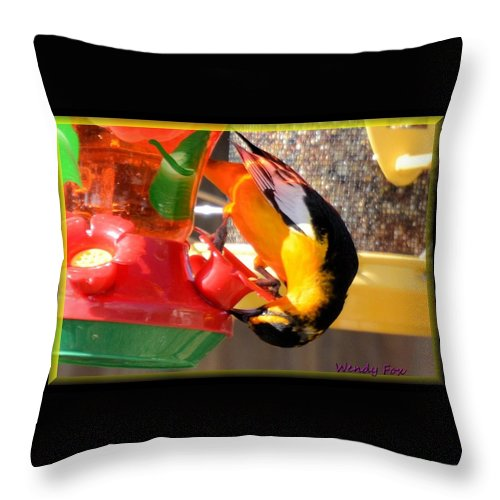 Bird Throw Pillow featuring the photograph Twisted Oriole by Wendy Fox