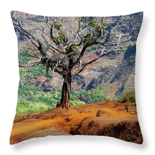 Tree Throw Pillow featuring the photograph Twisted Tree, Wiamea Canyon, Kawai Hawaii by Michael Bessler