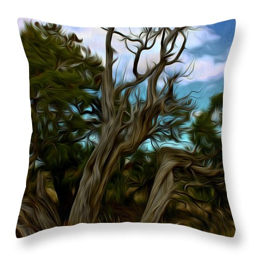 Bristlecone Throw Pillow featuring the photograph Twists In Color by David Kehrli