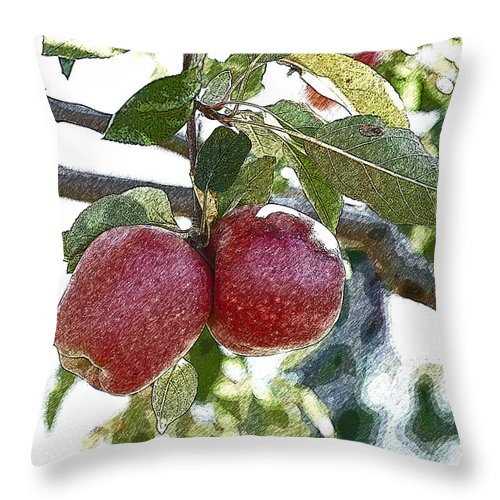 Apple Throw Pillow featuring the photograph Two Apples by Edward Sobuta