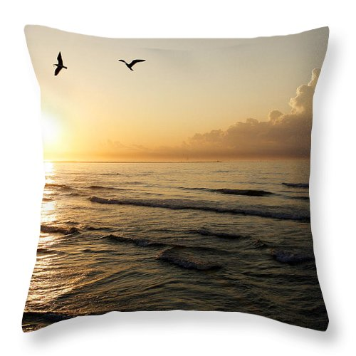 Beach Throw Pillow featuring the photograph Two Birds At Breakast by Marilyn Hunt