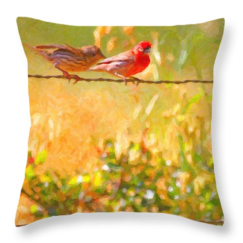 Bird Throw Pillow featuring the photograph Two Birds On A Wire by Wingsdomain Art and Photography