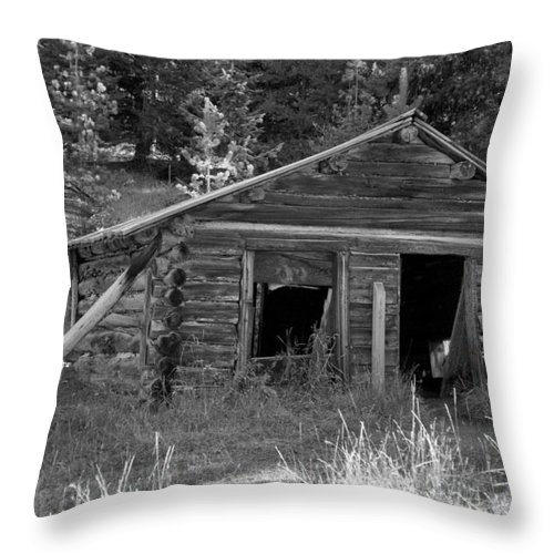 Abandoned Throw Pillow featuring the photograph Two Cabins One Outhouse by Richard Rizzo