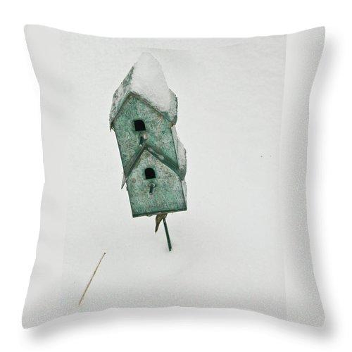 Birdhouse Throw Pillow featuring the photograph Two Level Bird House by Douglas Barnett