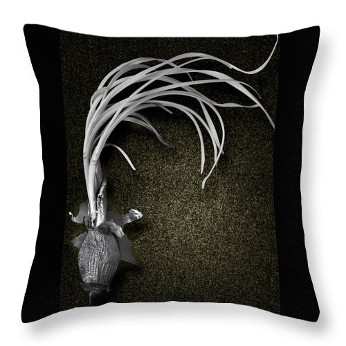Onion Throw Pillow featuring the photograph Two Month Old Onion by Yuri Lev