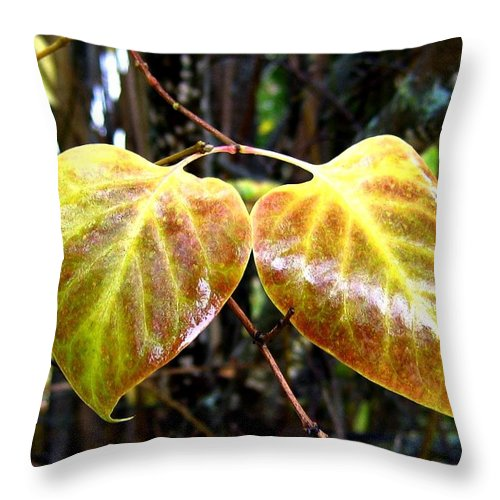 Autumn Throw Pillow featuring the photograph Two Of A Kind by Will Borden