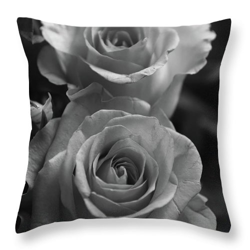 04719c9e8 Flowers Throw Pillow featuring the photograph Two Roses Black And White by  Jeff Townsend