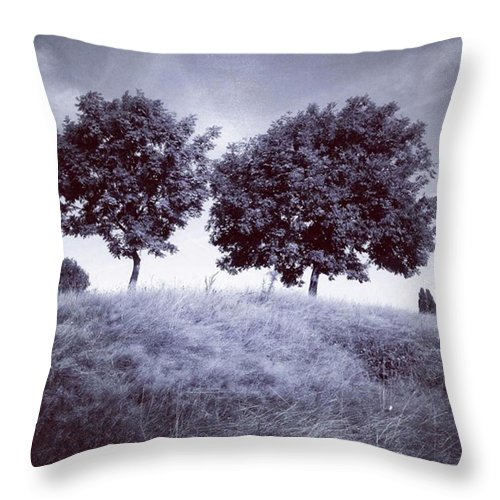 Snapseed Throw Pillow featuring the photograph Two Rowans The Cloddies, Nuneaton by John Edwards