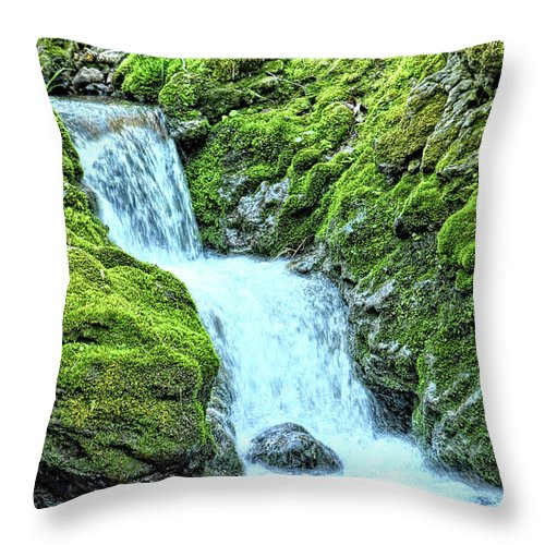 Mossy Throw Pillow featuring the photograph Two Steps Down by Bonfire Photography