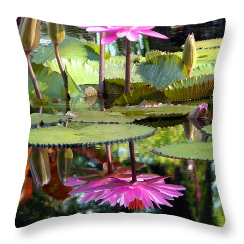 Water Lilies Throw Pillow featuring the photograph Two Worlds by John Lautermilch