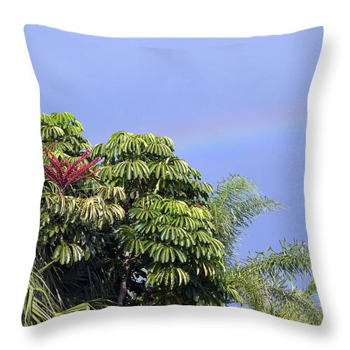 Rainbow Throw Pillow featuring the photograph Umbrella Tree With Rainbow And Flower by Allan Hughes