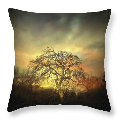 Tree Throw Pillow featuring the photograph Un Dernier Crepuscule by Zapista OU