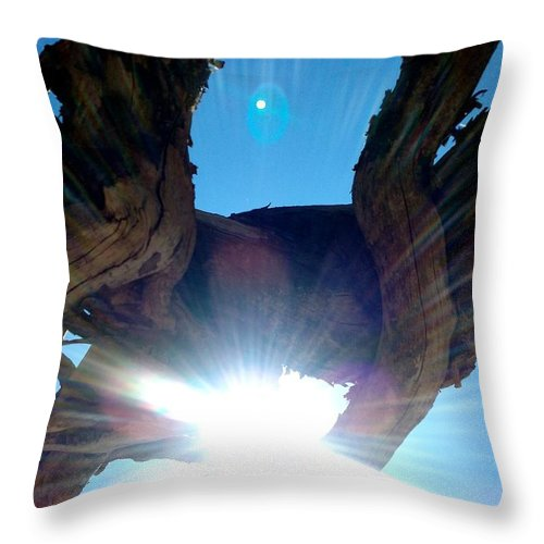 Roots Throw Pillow featuring the photograph Under The Roots by Sarah Houser