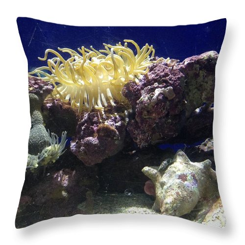 Ocean Throw Pillow featuring the photograph Under The Sea by Gina Sullivan