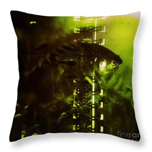 Goldfisg Throw Pillow featuring the photograph Under The Water by Angel Ciesniarska