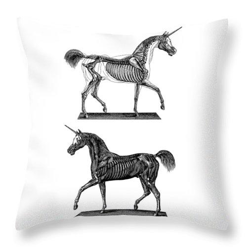 Unicorn Throw Pillow featuring the digital art Unicorn Anatomy by Madame Memento