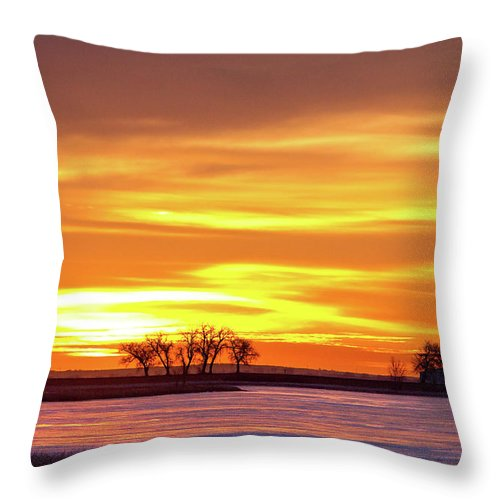 canvas Print Throw Pillow featuring the photograph Union Reservoir Sunrise Feb 17 2011 Canvas Print by James BO Insogna