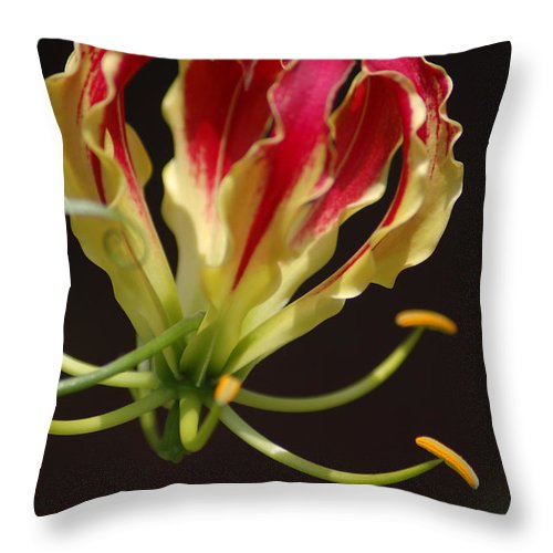 Flowers Throw Pillow featuring the photograph Unique by Donna Bentley