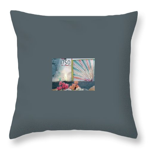 Throw Pillow featuring the photograph Scenes From Tucson by Bradford Turner