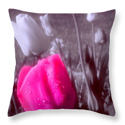 Flower Throw Pillow featuring the photograph Uniqueness by Kenneth Krolikowski