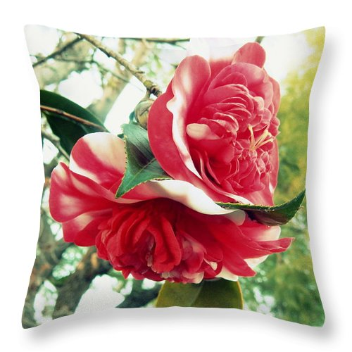 Floral Throw Pillow featuring the photograph United With The Vine by Karen Jbon Lee