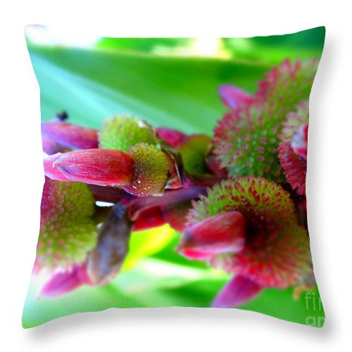 Justin Moore Throw Pillow featuring the photograph Unknown Flower Seeds by Justin Moore