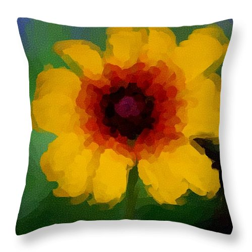 Digital Photograph Throw Pillow featuring the photograph Untitled 9-15-09 by David Lane