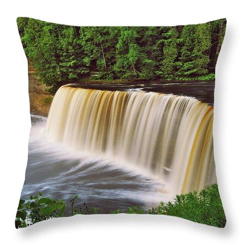Tahquamenon Throw Pillow featuring the photograph Upper Tahquamenon 6229 by Michael Peychich
