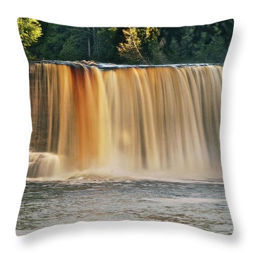 Tahquamenon Throw Pillow featuring the photograph Upper Tahquamenon Falls 6279 by Michael Peychich