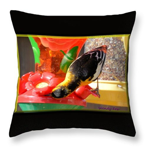 Bird Throw Pillow featuring the photograph Upside Down Oriole by Wendy Fox