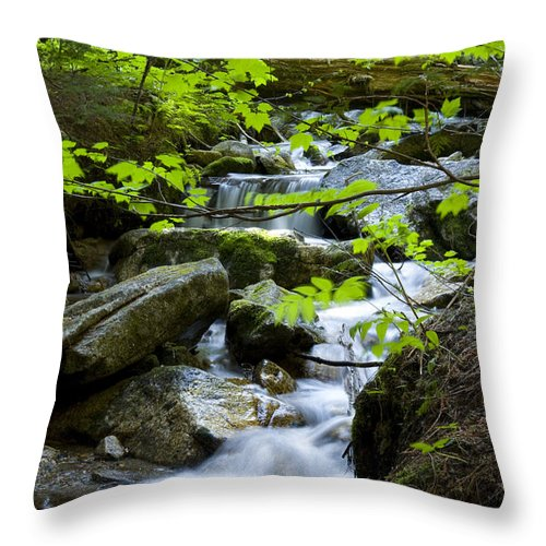 Stream Throw Pillow featuring the photograph Upstream by Idaho Scenic Images Linda Lantzy