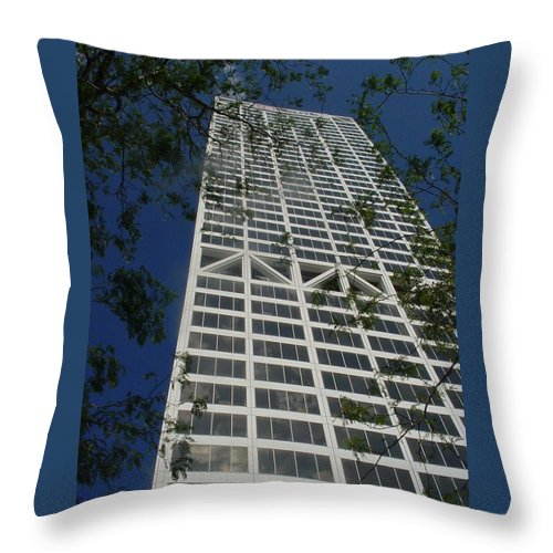 Us Bank Throw Pillow featuring the photograph Us Bank With Trees by Anita Burgermeister