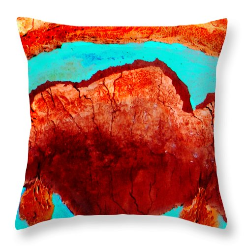 Color Throw Pillow featuring the painting Uterus by Veronica Jackson