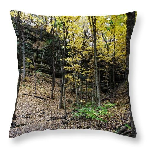 Starved Rock Throw Pillow featuring the photograph Utica Number 19 by Anna Villarreal Garbis