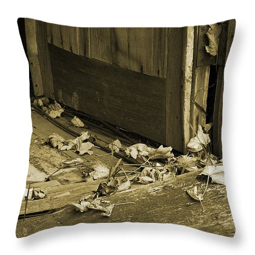 Leaves Throw Pillow featuring the photograph Vacancy Within by Linda McRae