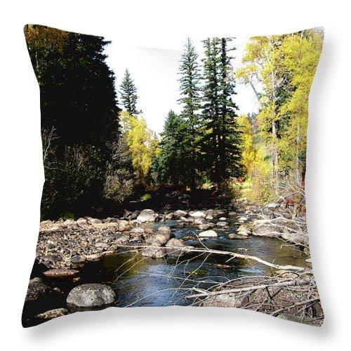 Colorado Throw Pillow featuring the photograph Vallecito Colorado I by Marti Green