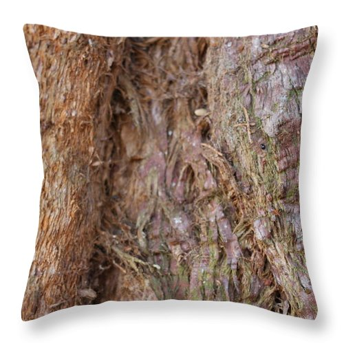 Timber Throw Pillow featuring the photograph Valleys In The Wood by Igor Zharkov