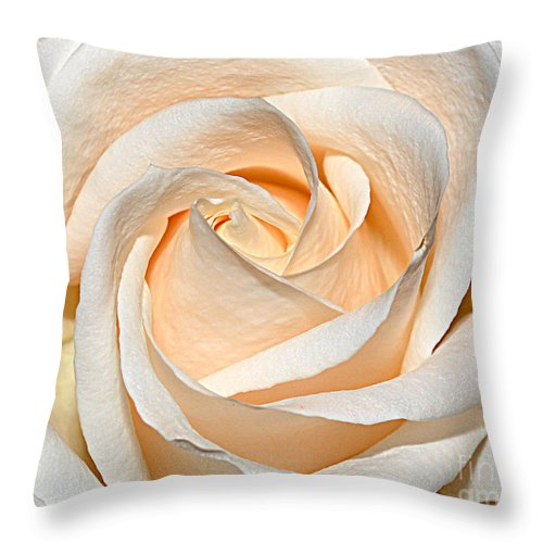 Berry Throw Pillow featuring the photograph Vanilla Cream by Diane E Berry