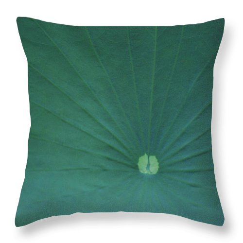 Throw Pillow featuring the photograph Vanity by Heather Kirk