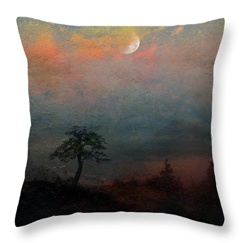 Landscape Throw Pillow featuring the photograph Vantage Point by Ed Hall