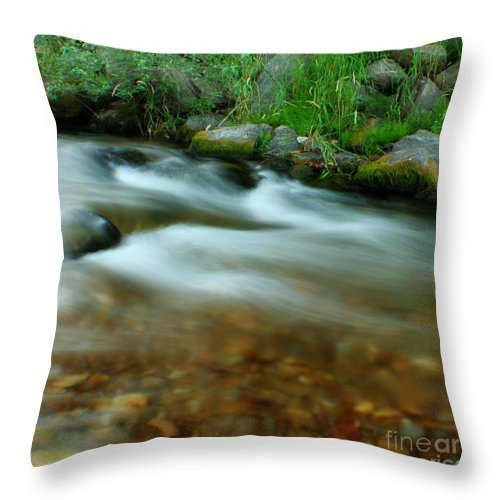 River Throw Pillow featuring the photograph Velvet River by Idaho Scenic Images Linda Lantzy