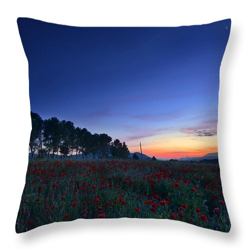 Planet Throw Pillow featuring the photograph Venus And Moon Over Spring Poppies by Guido Montanes Castillo