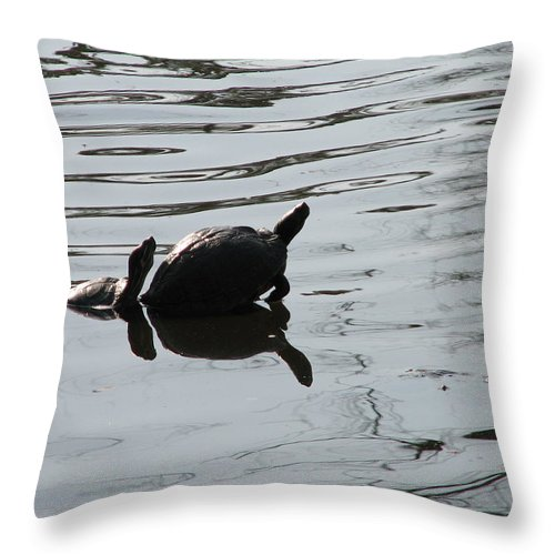 Turtle Throw Pillow featuring the photograph Vereen Turtles by Kelly Mezzapelle